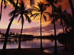 Free online Jigsaw puzzle N02: Evening beach
