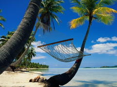 Free online Jigsaw puzzle N11: On the beach